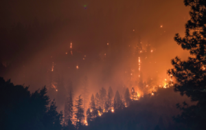 Wildfires in Canada: Meaning, Causes & Effects